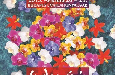 Plakát Kiállítás… korábbi Kiállításaink plakátjai
